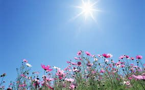 karrier-boldogsag.hu:sunshine_Peter5